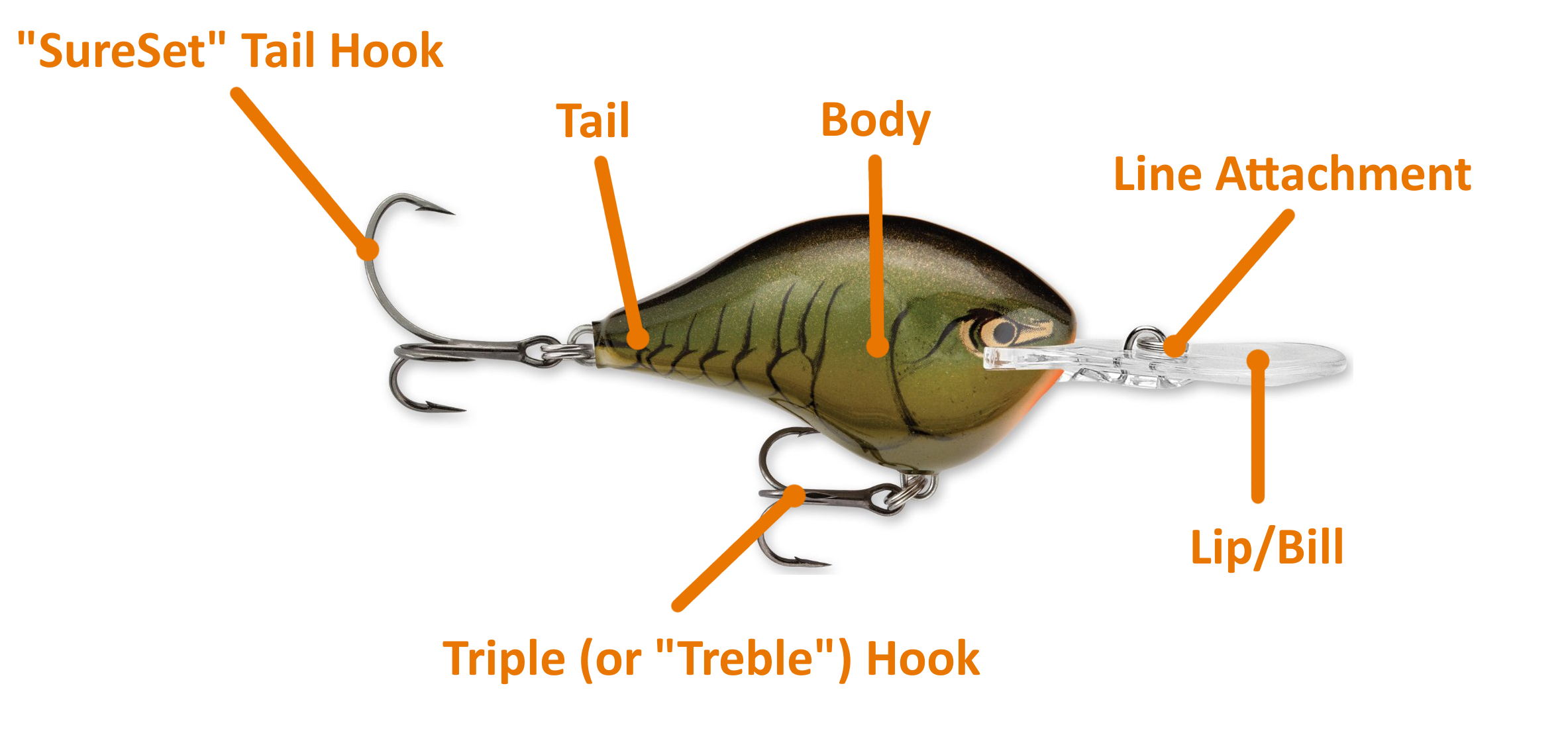 types of fishing baits