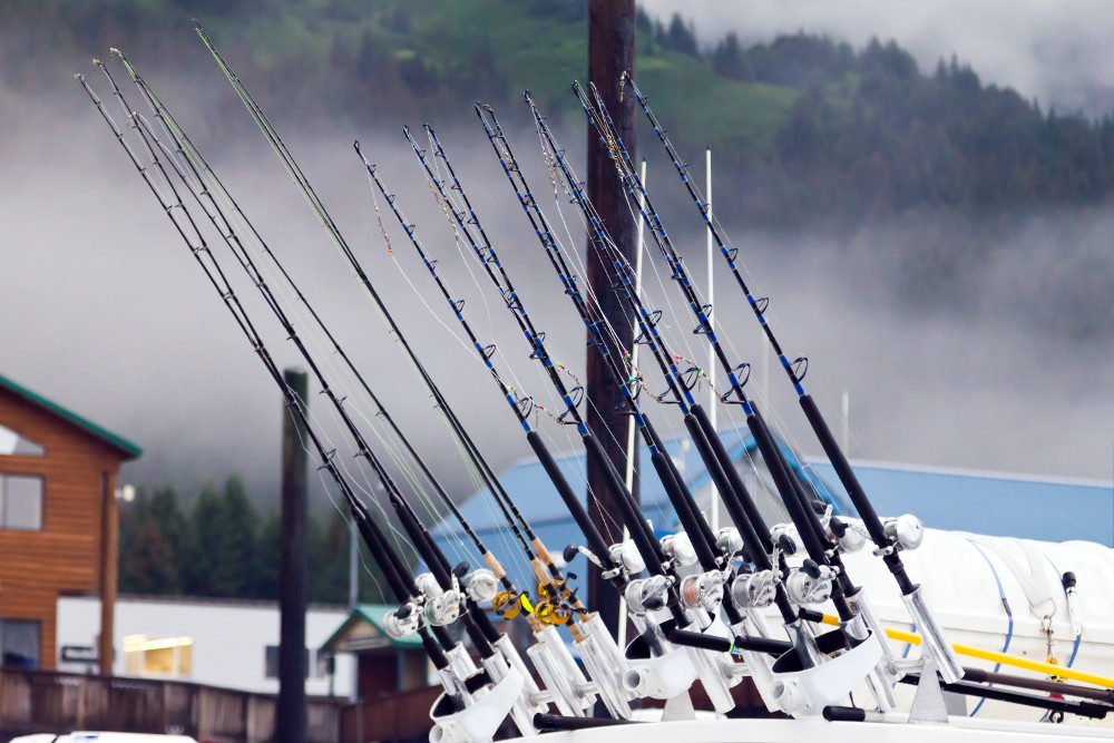 Different types of fishing rods 2018 flannel fishermen for Types of fishing poles