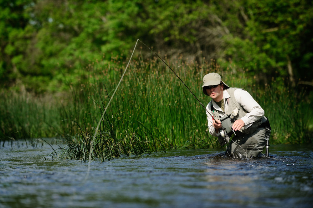 best fly fishing rods reviews