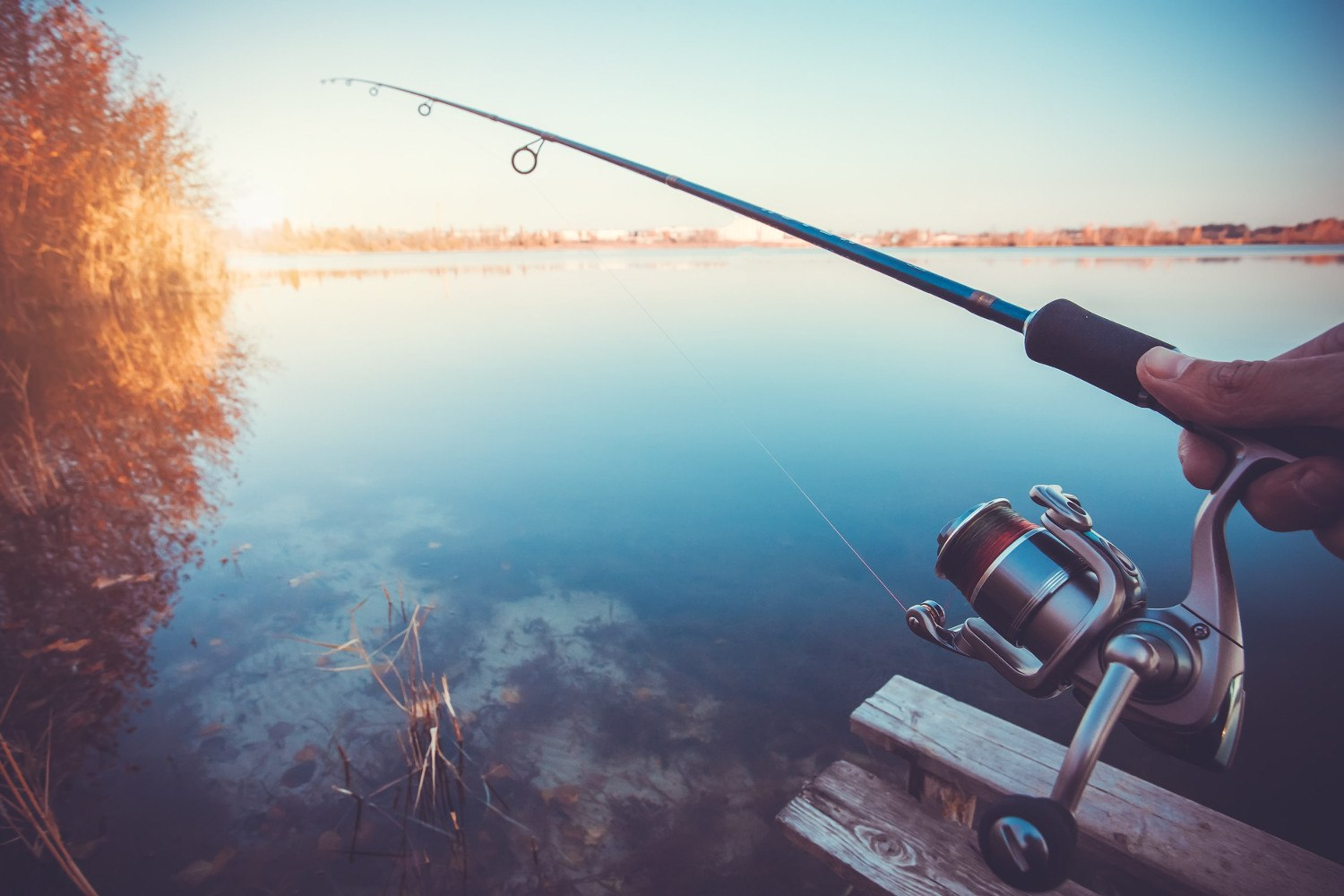 best Spinning Rods Under $100